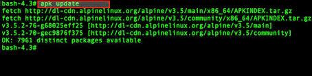 apk update 10 alpine linux apk command exles nixcraft