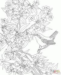 wren and yellow jessamine south carolina download coloring page