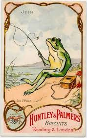 770 best frogs images on pinterest frogs frog art and amphibians