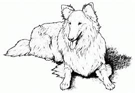 free coloring pages of lost dog free dog coloring pages free dog