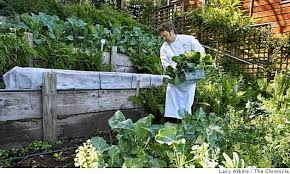 from garden to plate restaurants with gardens sfgate
