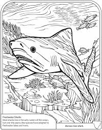welcome to dover publications 3d coloring book sharks coloring