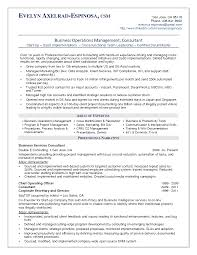 Chief Operations Officer Resume 25 Best It Program Manager Resumes Vntask Com