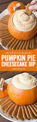 thanksgiving themed appetizers pumpkin pie cheesecake dip recipe pumpkin pie cheesecake