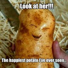 Meme Potato - happy potato memes lol