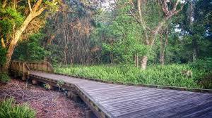 Sawgrass Mills Map Sawgrass Lake Park Trail Florida Alltrails Com