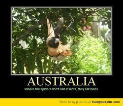 Australia Meme - australia meme funny pictures