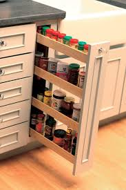 Kitchen Cabinet Door Spice Rack Ta The Door Spice Rack Spaces Traditional With White