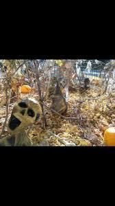 skeletons halloween 218 best halloween skeletons skulls u0026 mummies images on pinterest