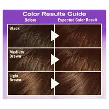 what color is sable hair color sable hair color images