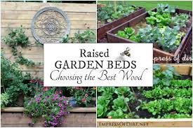 best wood for raised garden beds empress of dirt
