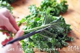 comment cuisiner le kale chou kale vert frisé que faire avec les papilles