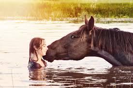 horse love happiness joy summer water farm u0026 ranch