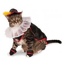 cat costume puss in boots cat costume with same day shipping baxterboo