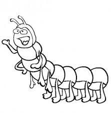 hungry caterpillar coloring sheets kids coloring point