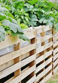 pallet gardening pallets garden pallets and herbs garden