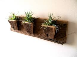 Wall Hanging Planters air plant holder planters tillandsia air plants reclaimed barn