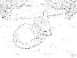 cute fennec fox for coloring page animal simple fennec fox