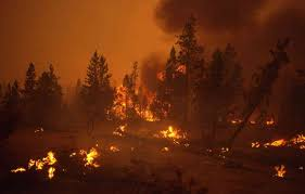 Wildfires In Colorado by Yellowstone Ablaze The Fires Of 1988 Wyohistory Org