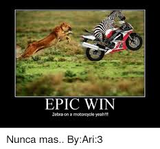 Epic Win Meme - epic win zebra on a motorcycle yeah nunca mas byari3 meme on me me