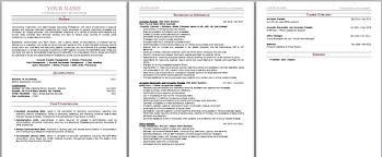 Best Resume Australia by Best Resume Writing Australia Professional Resume Template