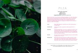 native plant fertiliser title summary