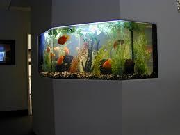 very modern aquarium design for home in living room area modern