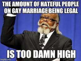 Too Gay Meme - too damn high meme imgflip