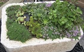 How To Make Planters by How To Make A Hypertufa Planter Gardener U0027s Supply