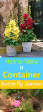 Urban Gardening Tips How To Make A Butterfly Container Garden Making A Butterfly
