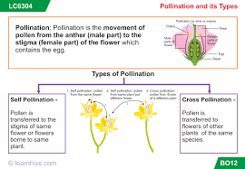 Part Of Flowers - learnhive cbse grade 7 science growth development and