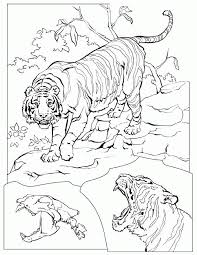 coloring pages of tigers tiger coloring pages coloring home