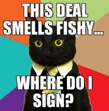 Cat Problems Meme - business cat problems