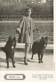 belgian sheepdog figurine hallmark store 64 best dogs images on pinterest german shepherds belgian