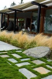 27 best ornamental grasses images on ornamental