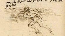 history of swimming wikipedia