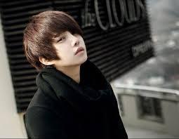 chicos model short dark hair male mens fancy dress handsome boys 30cm light brown dark brown