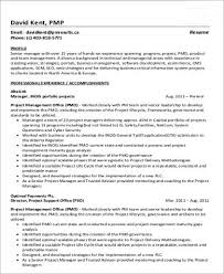 project management resume pdf sample program manager resume 7 examples in word pdf
