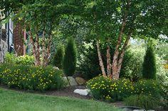 Landscaping Ideas For Small Front Yard Small Front Yard Foundation Planting Evergreen Shrubs