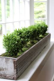 316 best garden containers window boxes images on pinterest