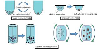 3d cell culture methods and applications a short review elveflow