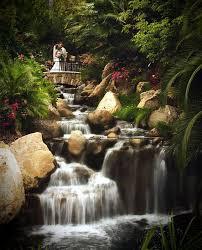 arbor wedding venues 101 best beautiful san diego wedding venues images on