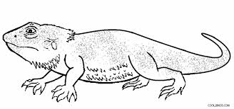 Printable Lizard Coloring Pages For Kids Cool2bkids Reptile Coloring Pages