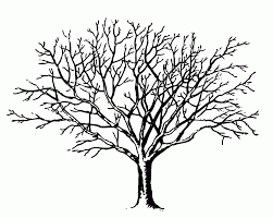 bare tree coloring page kids coloring
