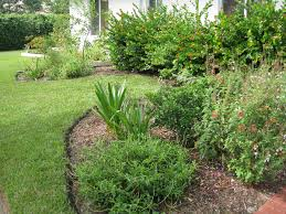 landscaping sustainscape florida