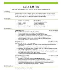 Resume Examples Summary by Unforgettable Freight Associate Resume Examples To Stand Out