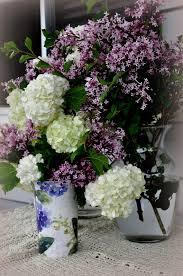 japanese lilac bush archives frugal little bungalow