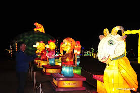the lights festival houston 2016 magic winter lights show pulls houston crowds chinadaily com cn