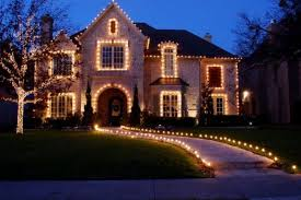 white net lights in the hedges bright beautiful