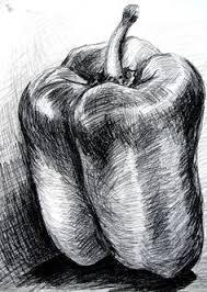 still life drawing of fruits google search seni sana sini
